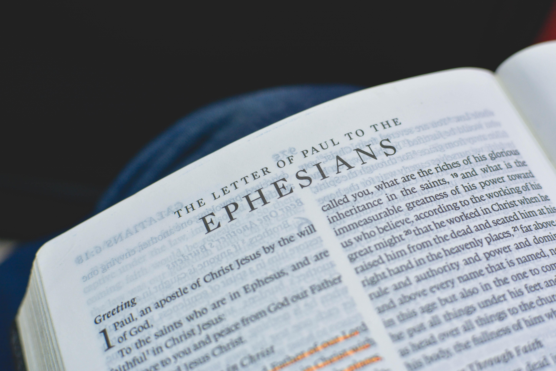 Ephesians textbook