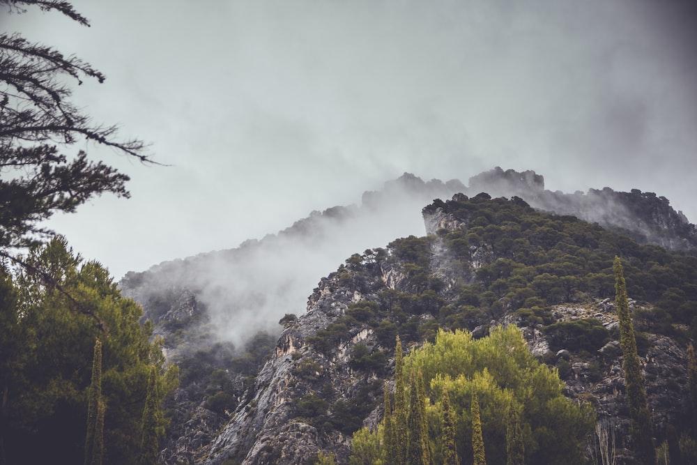 mountain in mist
