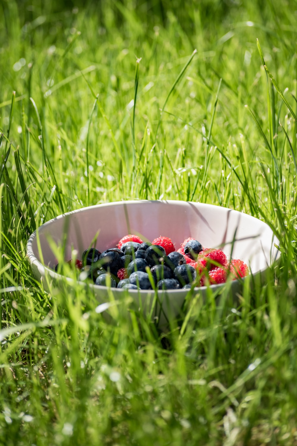 blueberry and raspberry on white bowl