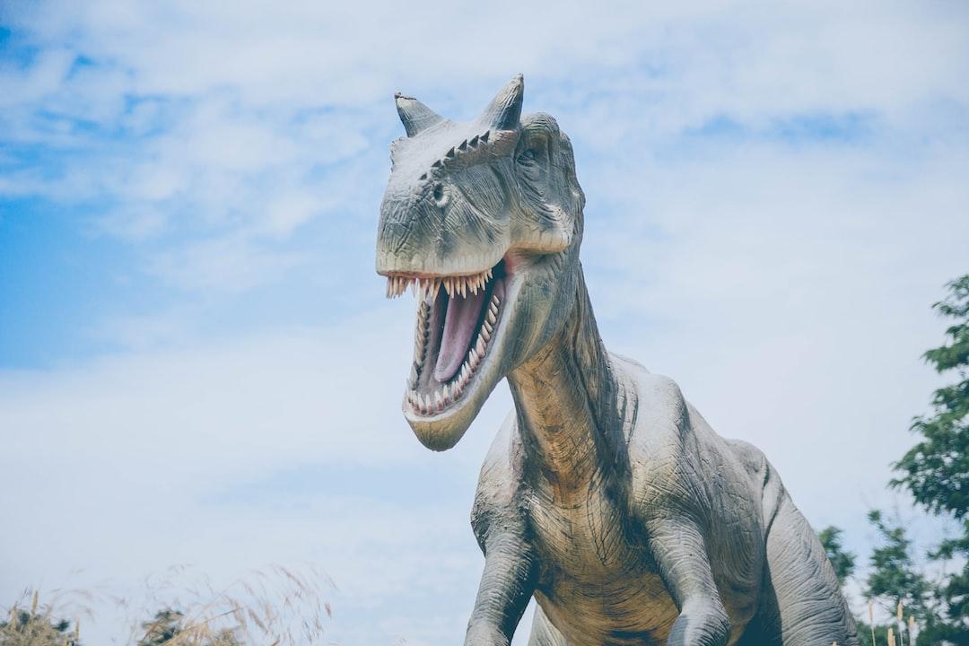 500 Dinosaur Pictures Hq Download Free Images On Unsplash