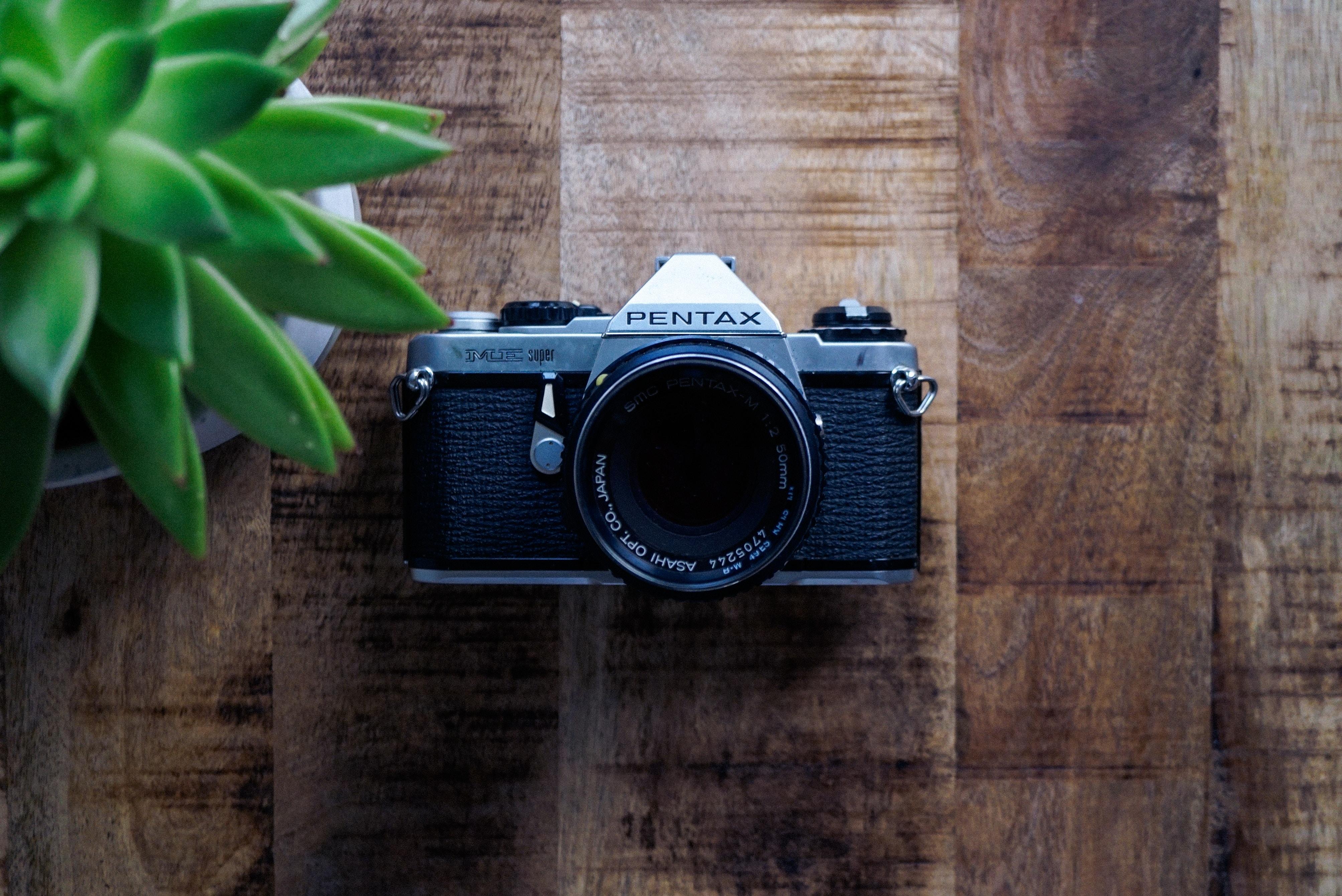 Pentax camera beside plant