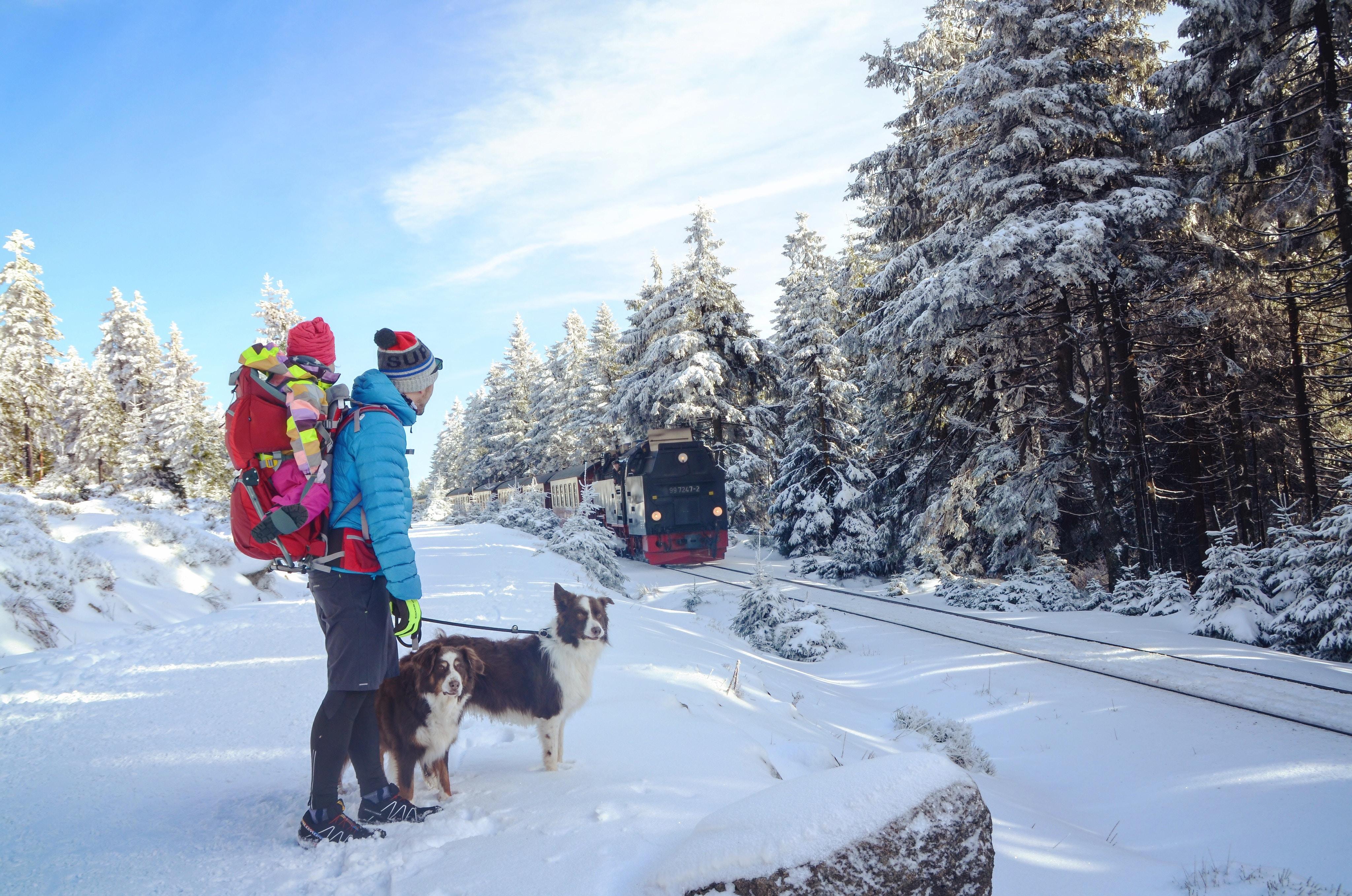 man and dog on snow terrain