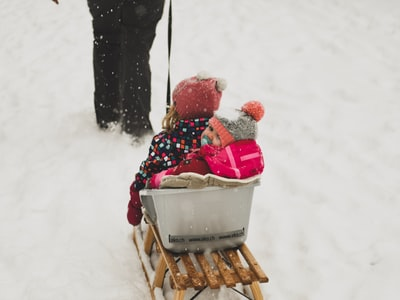 person pulling babies riding on white and brown sled during daytime sleigh zoom background