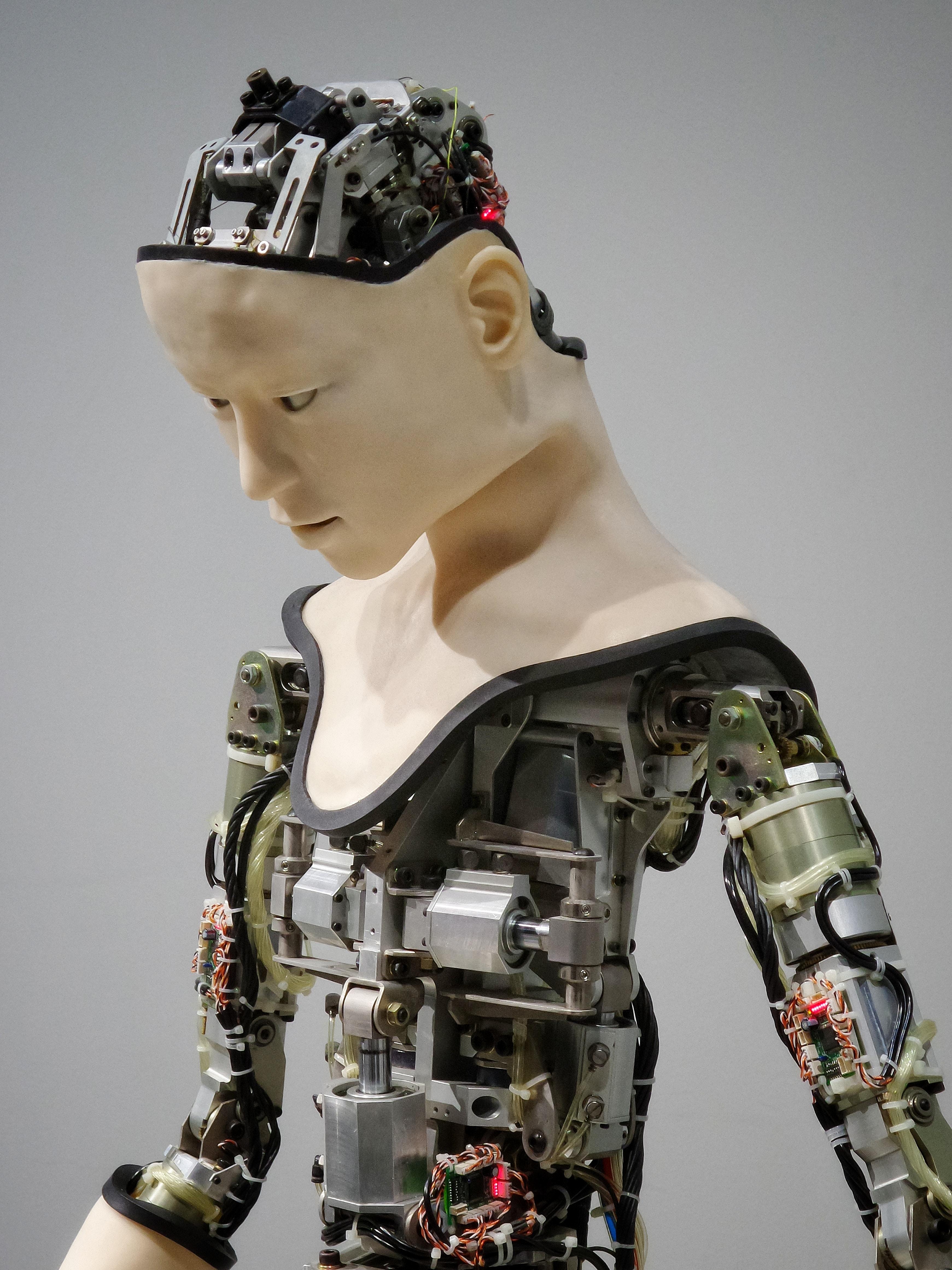 Prawa maszyn – czy wciąż są jedynie abstrakcją?