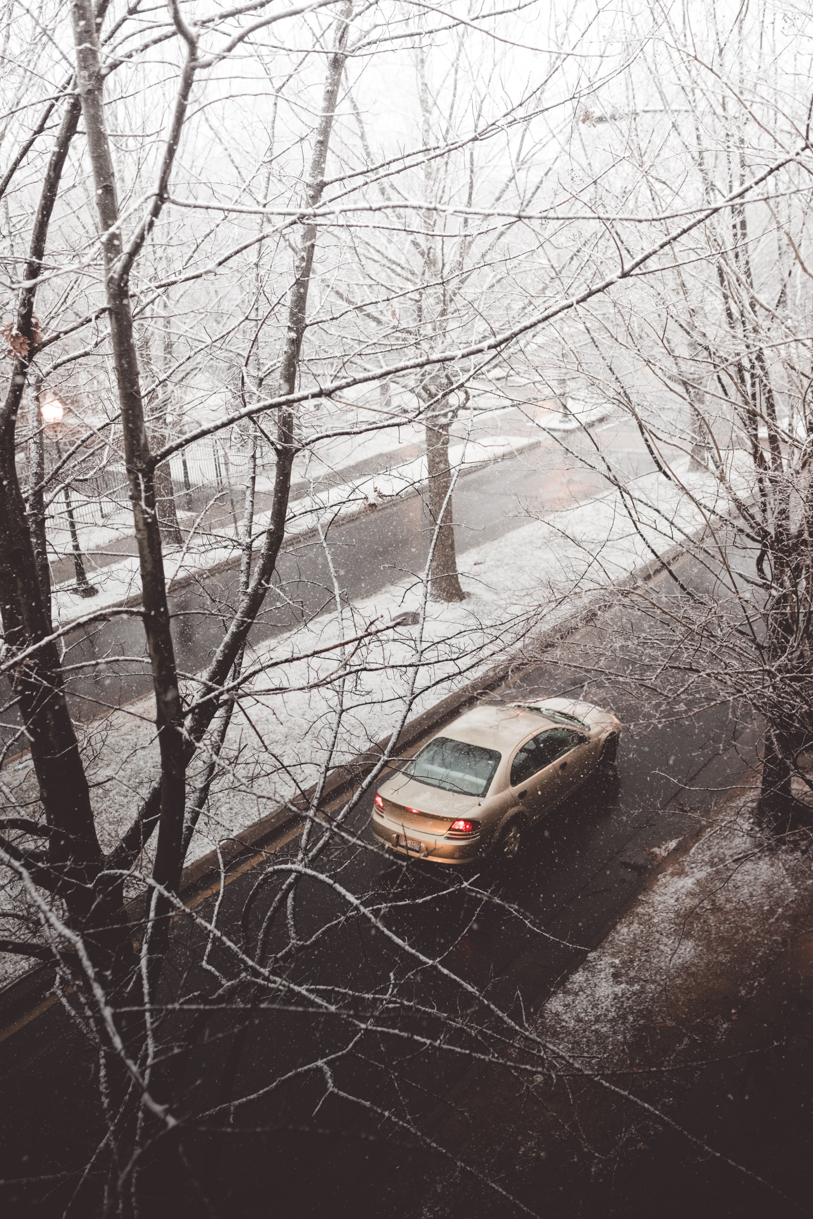 brown sedan running on the street surrounded with bare trees during winter