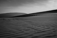 grayscale photography of sand