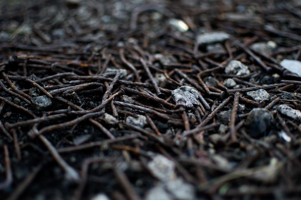 gray nail lot on floor