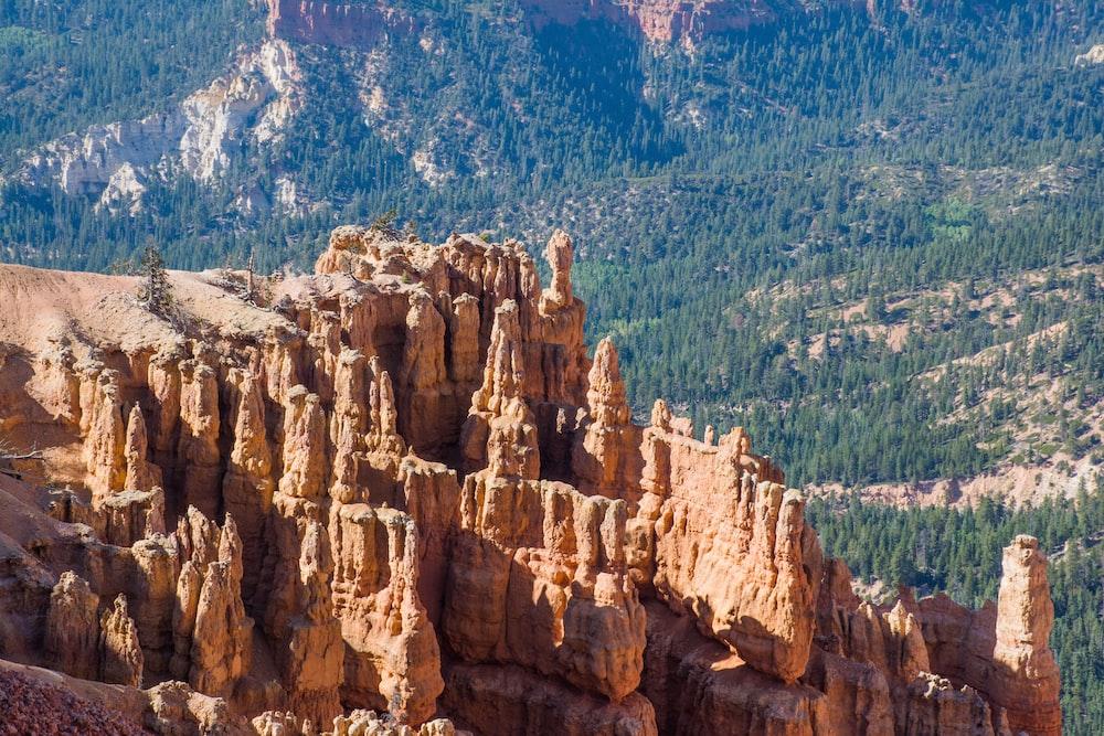 photo of rocky mountain near pine trees