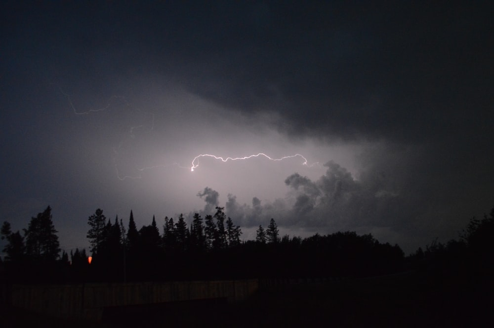 lightning on forest during night time