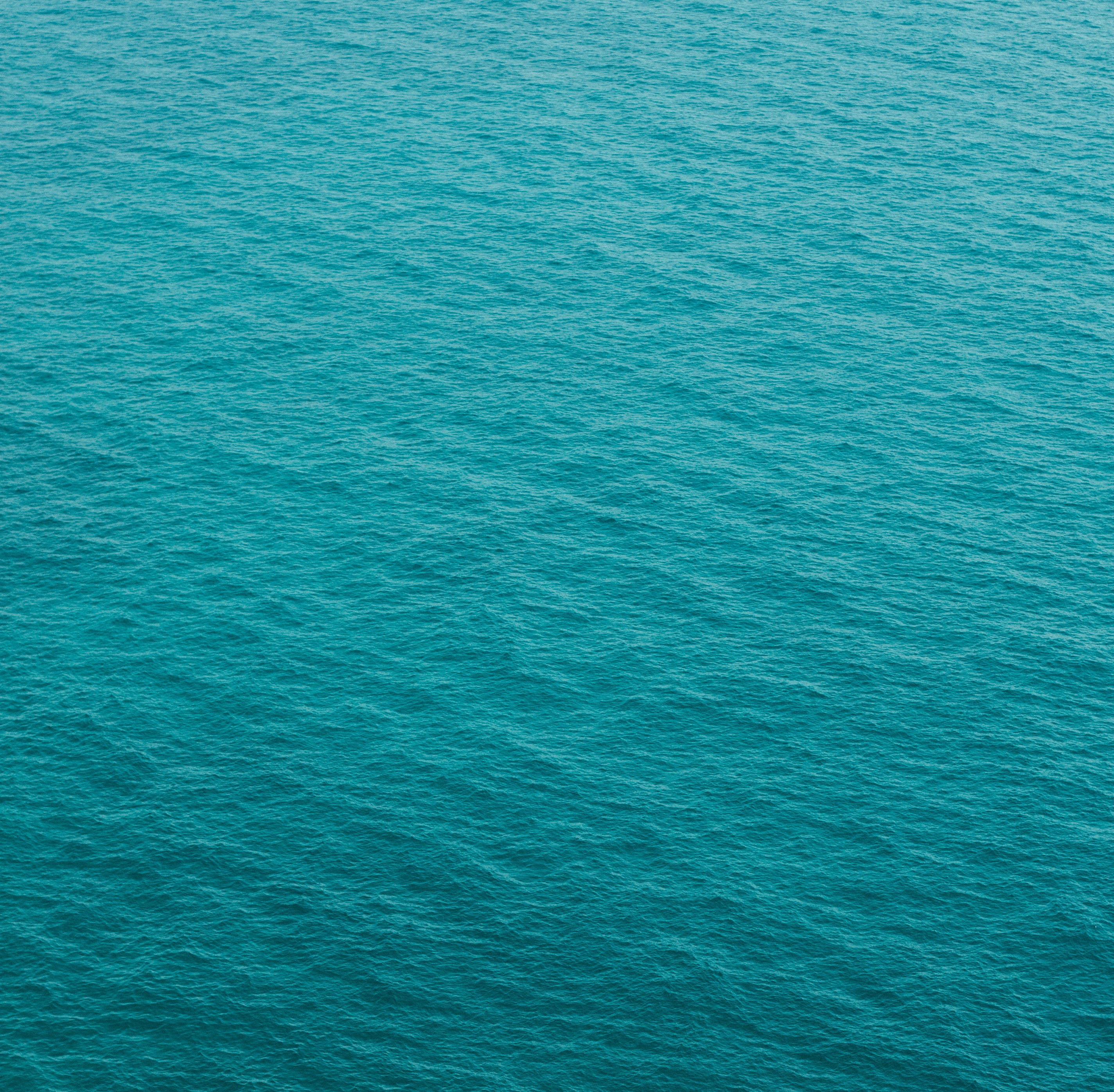 photography of green body of water