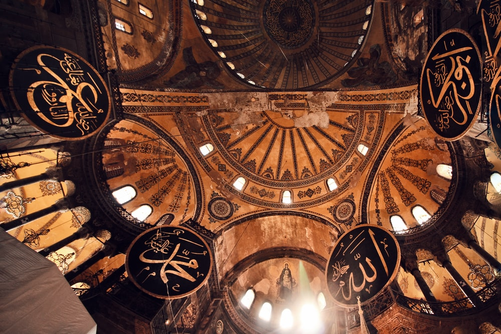 brown and black cathedral ceiling