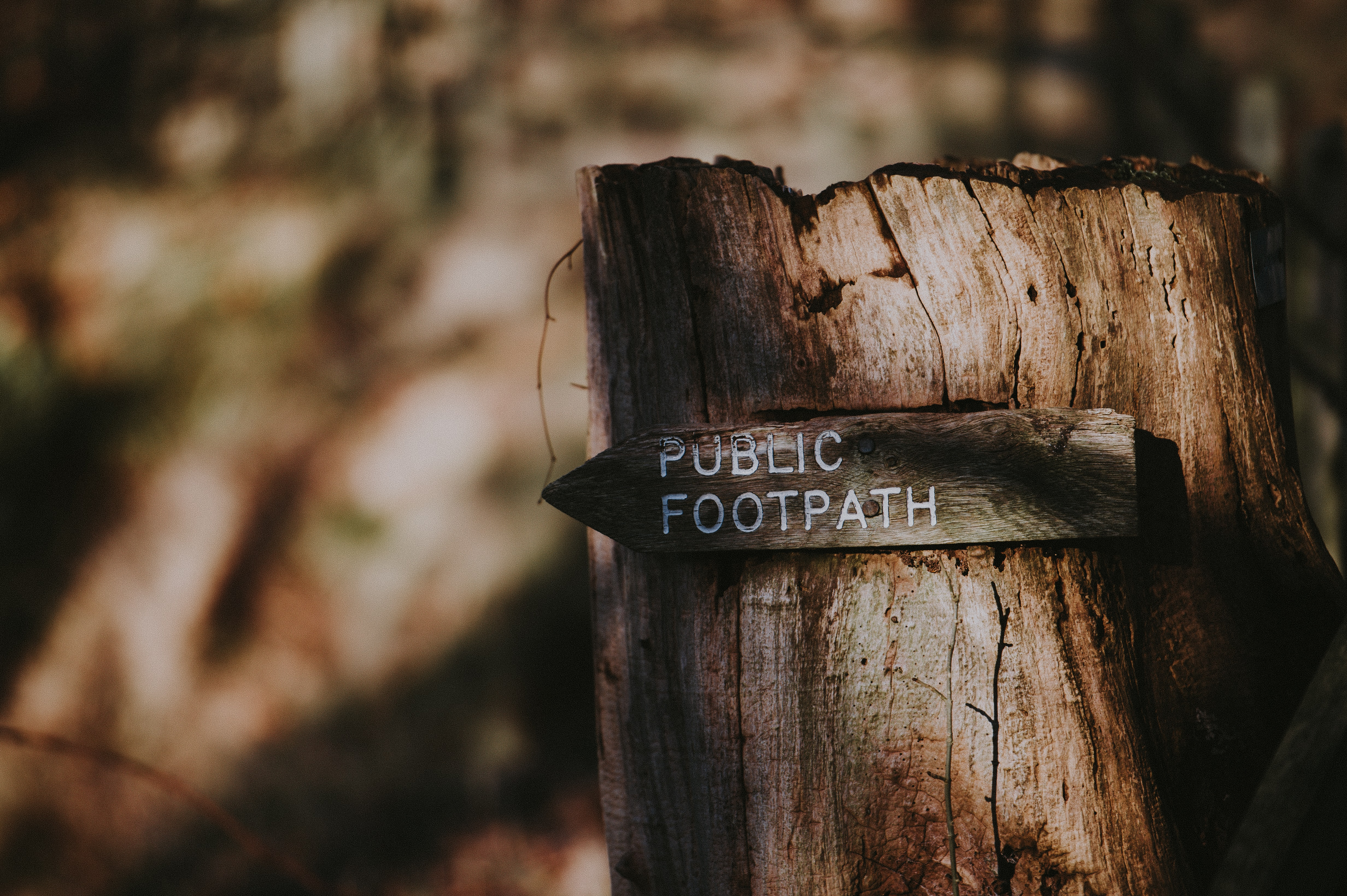 public footpath signage selective focus photography