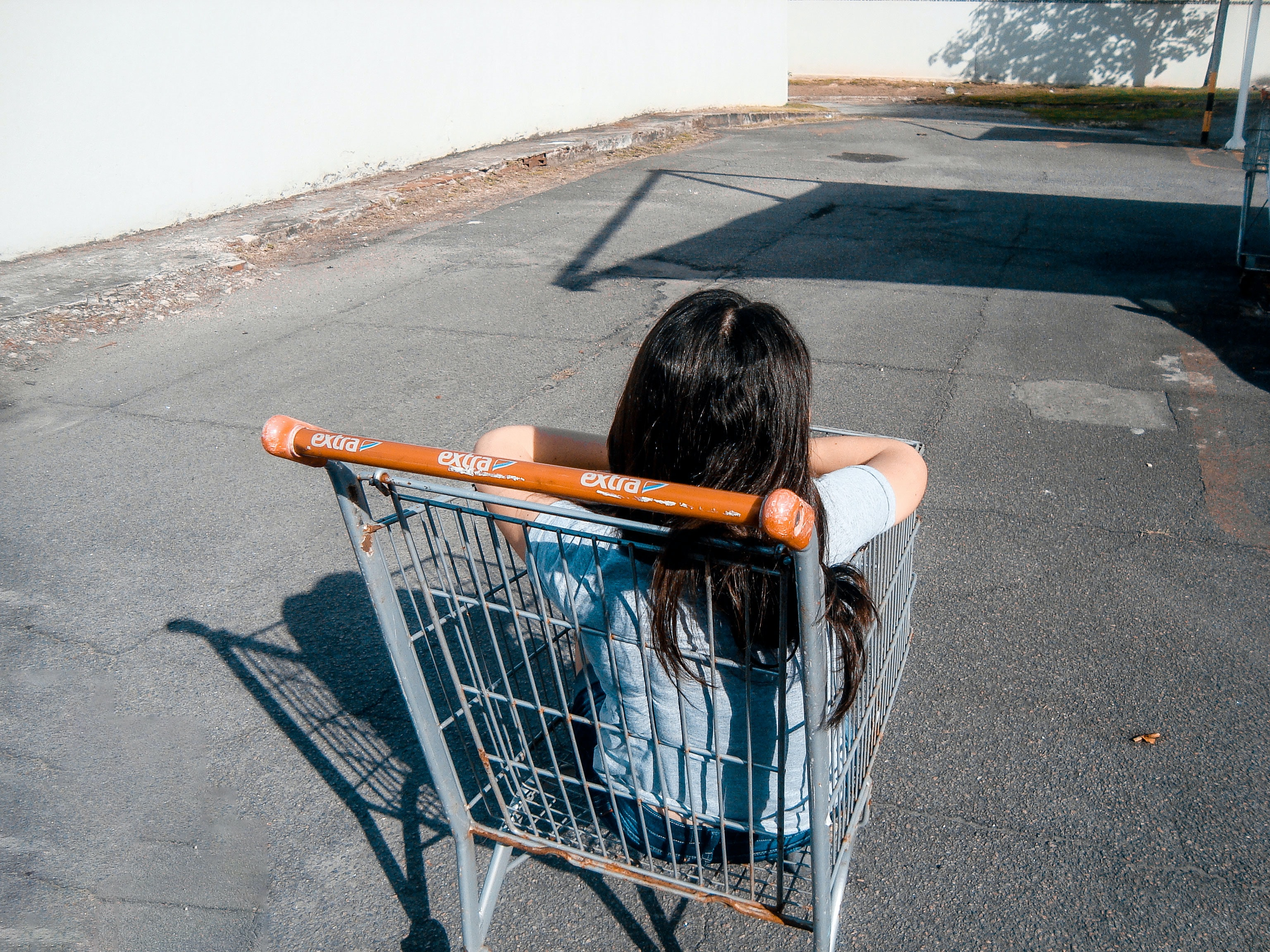 girl in gray grocery cart