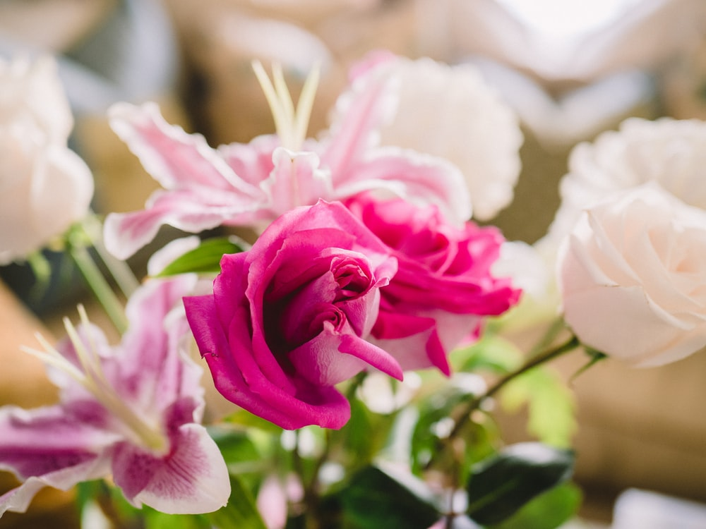 pink and white roses arrangement