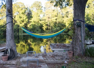 blue hammock binded on tree