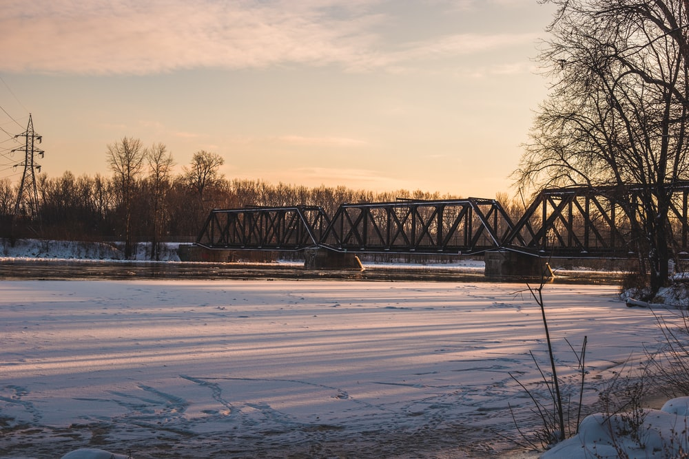 gray bridge near trees during daytime