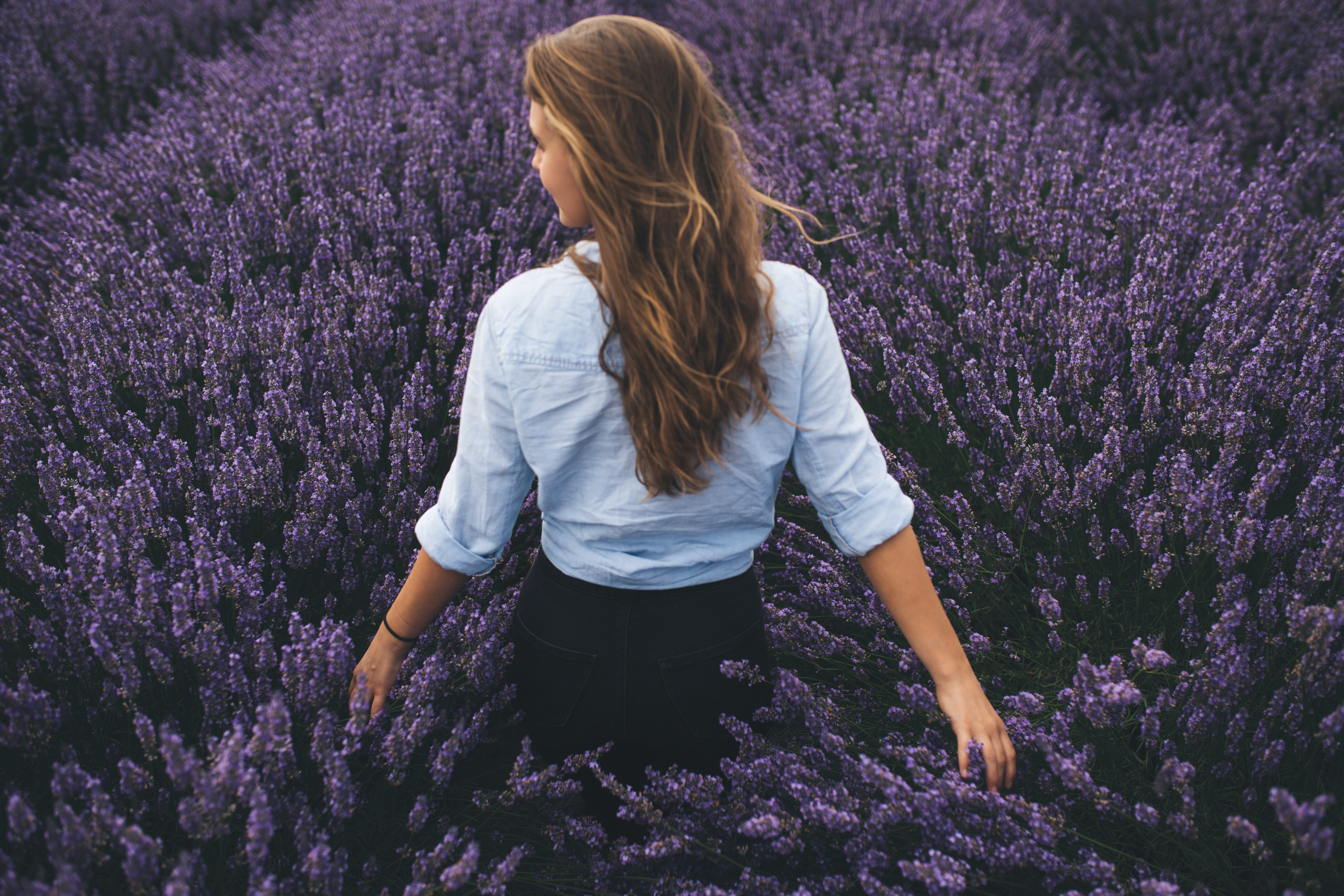 woman walking on lavender field