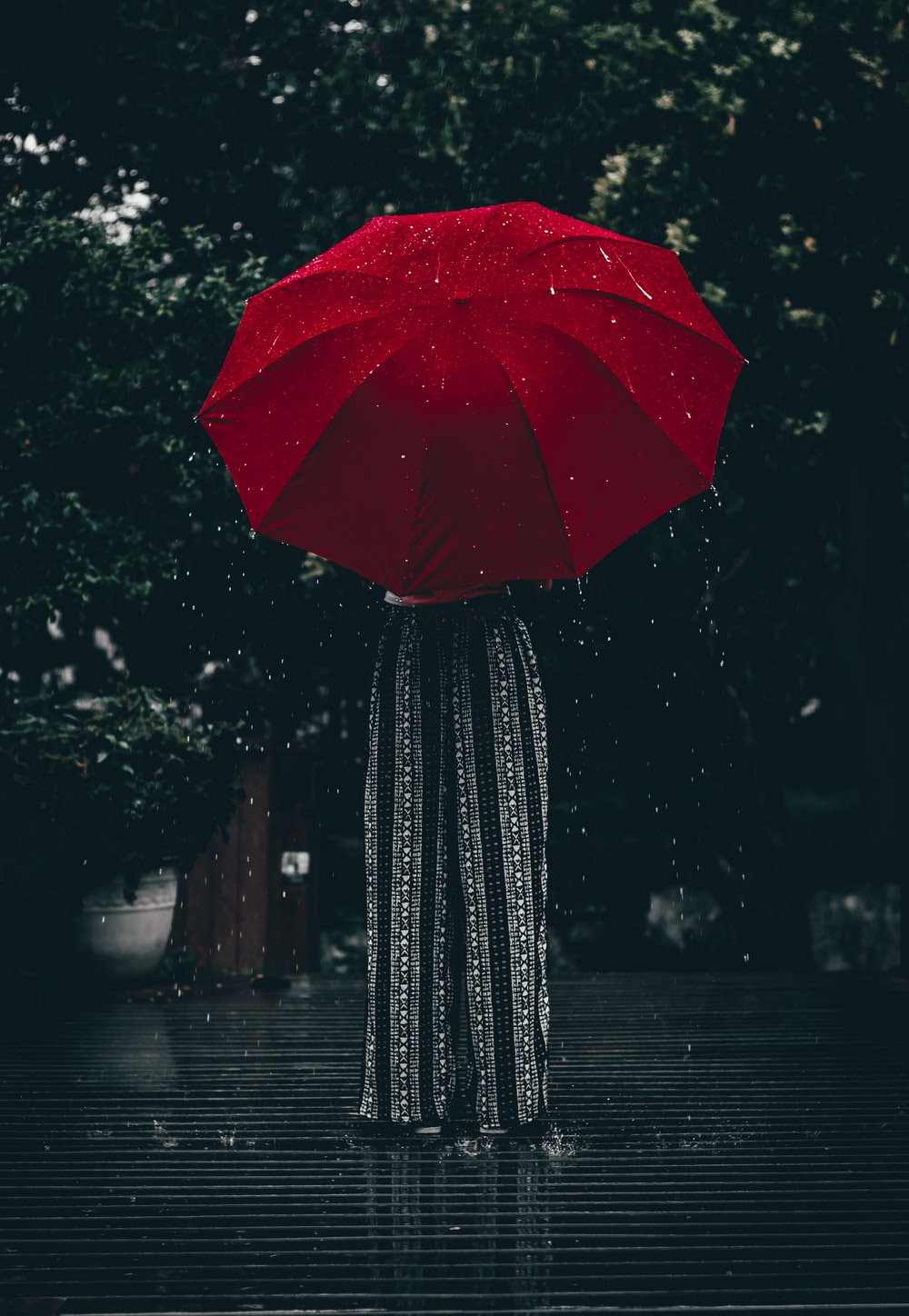 woman holding red umbrella standing near tree at daytime