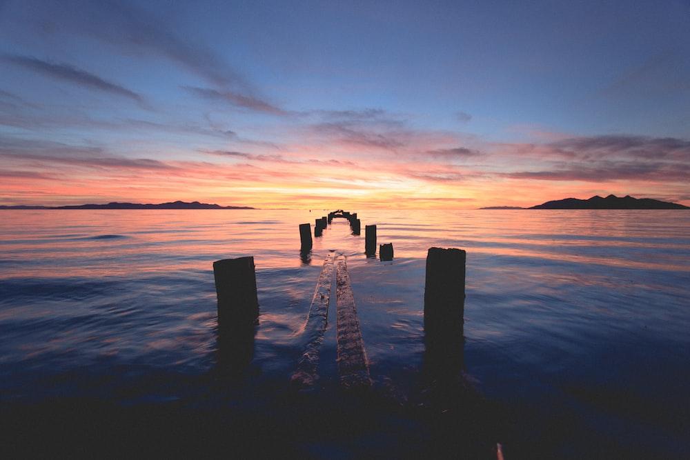scenery of wooden dock bridge