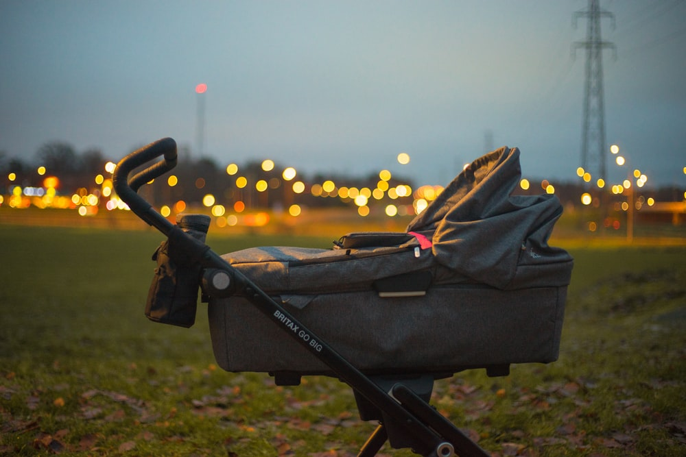 selective focus of gray bassinet stroller on green grass