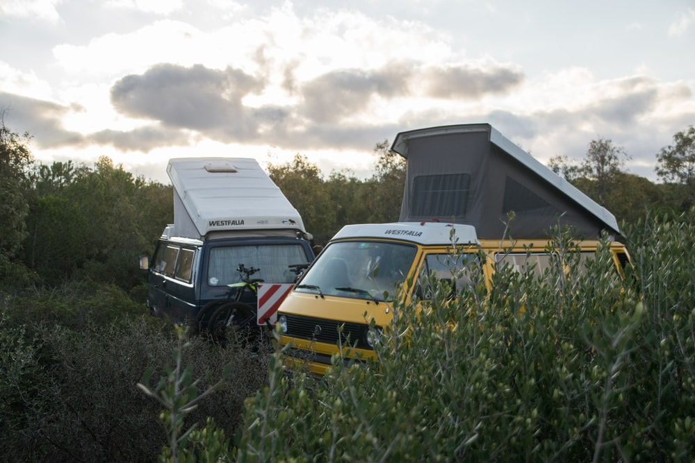 yellow and black vans in forest