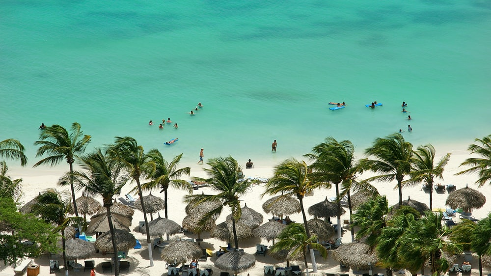 aerial photo of people at the beach during daytime