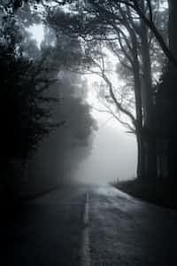 Darkness stories