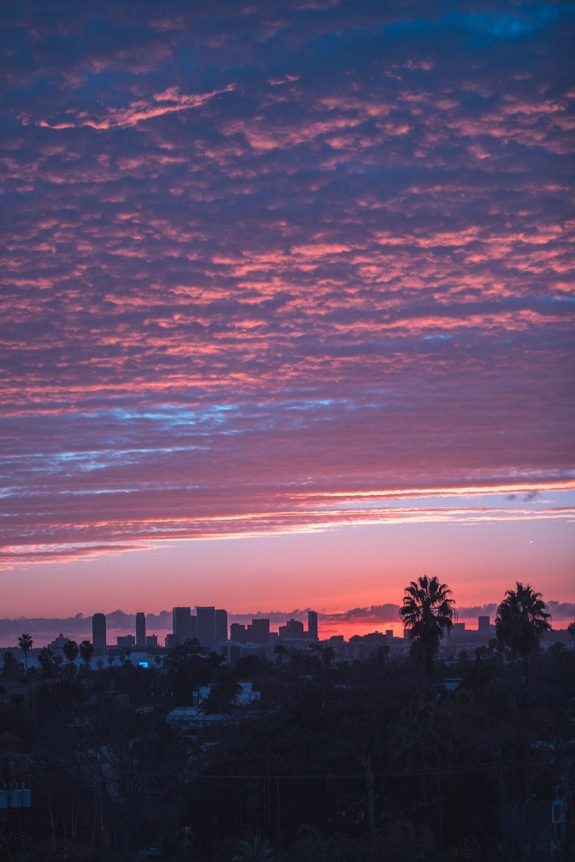 skyline photography of city