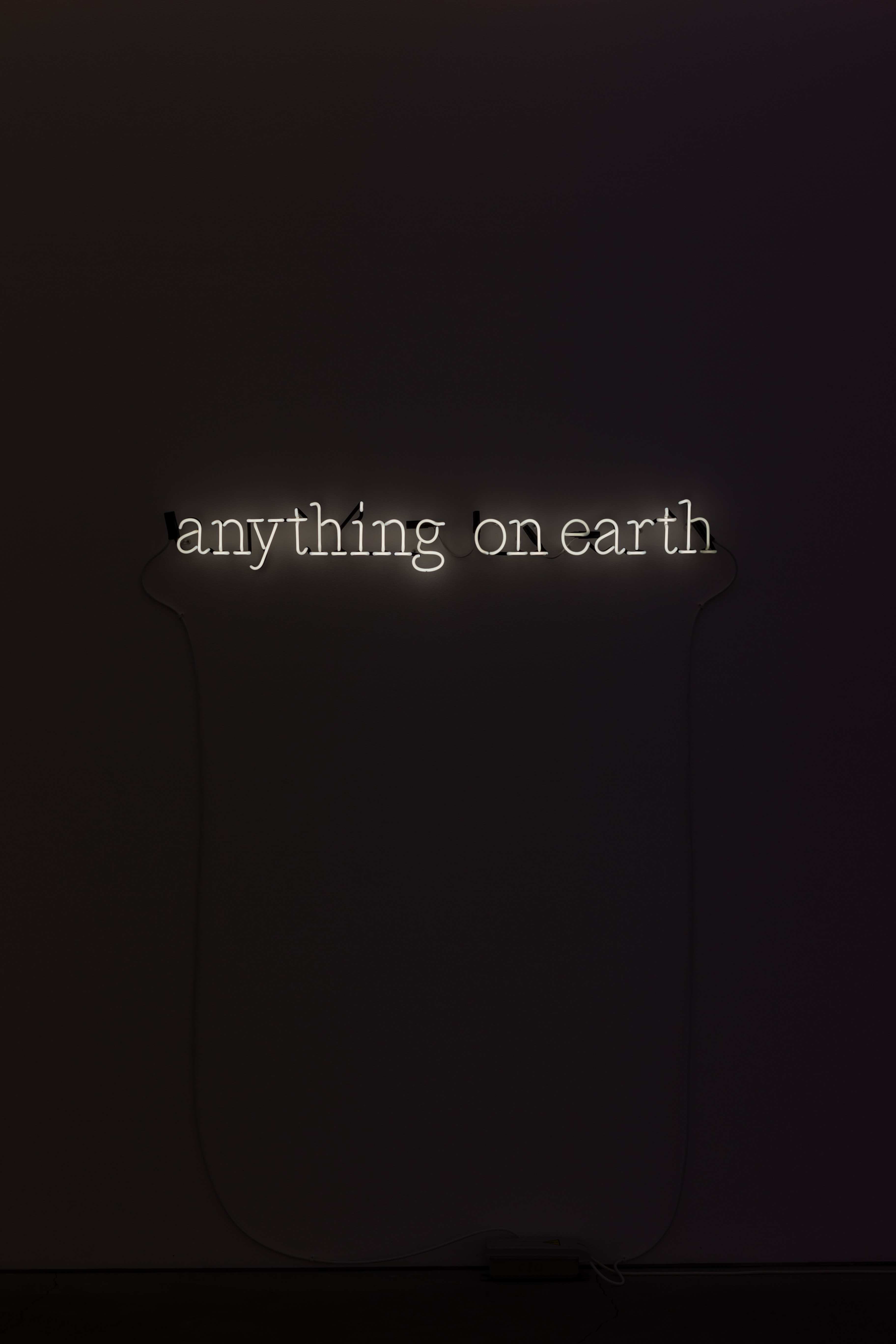 anything on earth text
