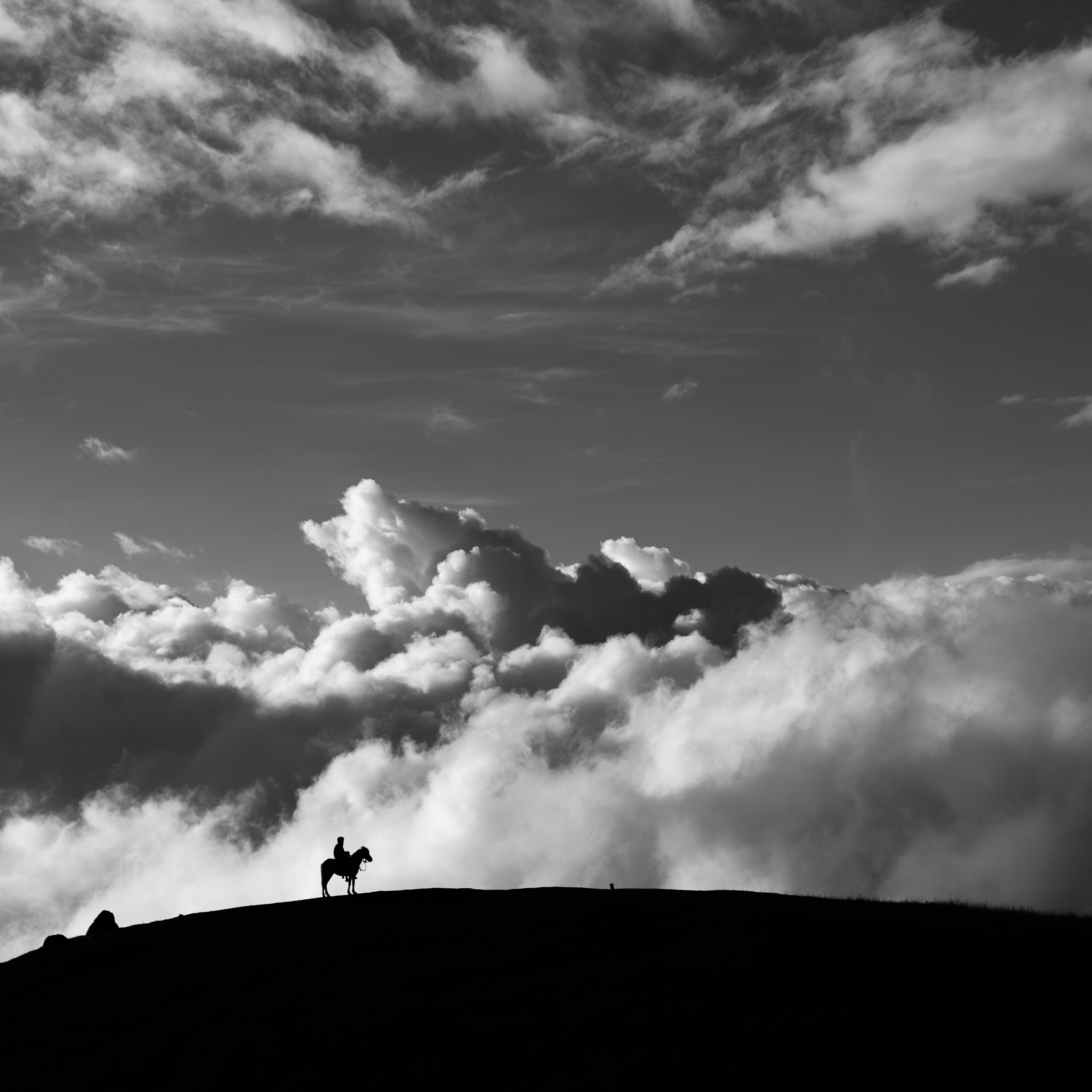 grayscale photography of silhouette of man riding horse at mountain with cumulus clouds as background