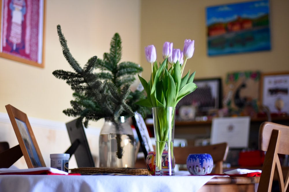 purple tulips on clear glass vase above table