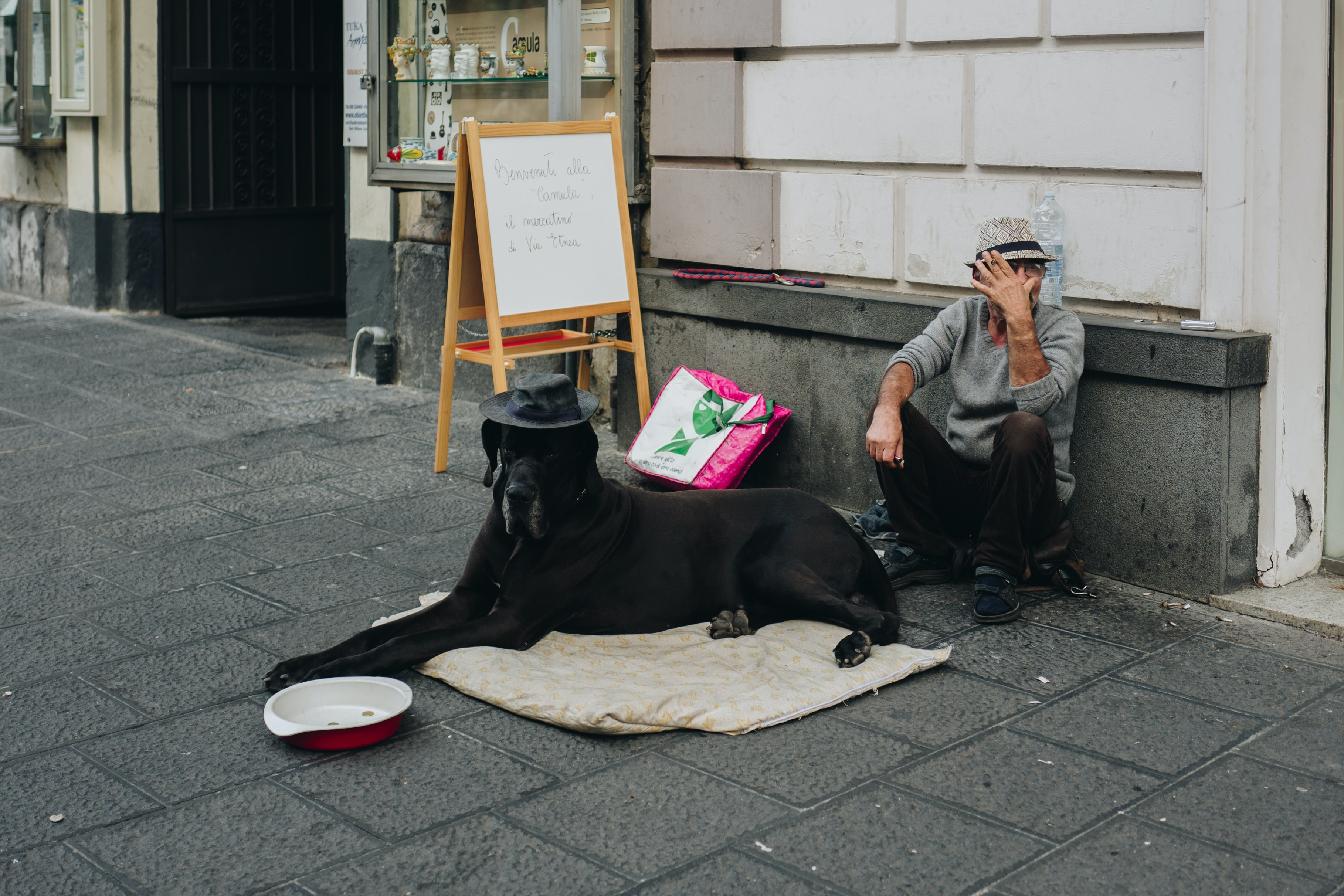 man sitting beside the dog