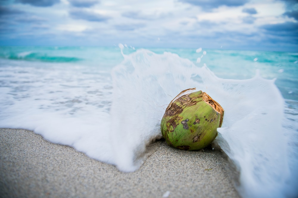 coconut on beach with waves