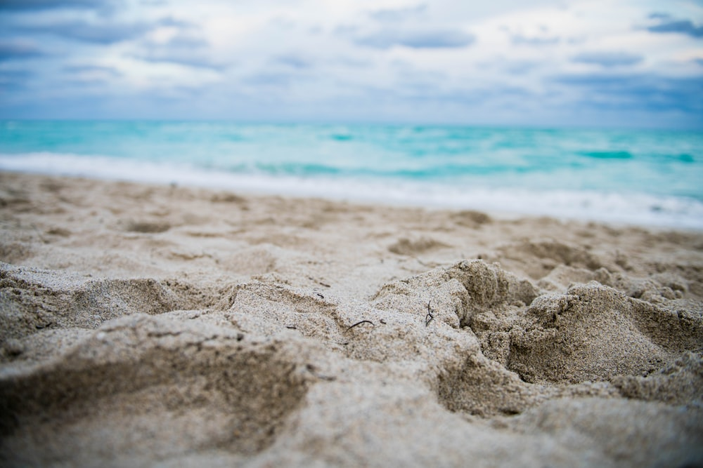 close up photography of footprints on shore
