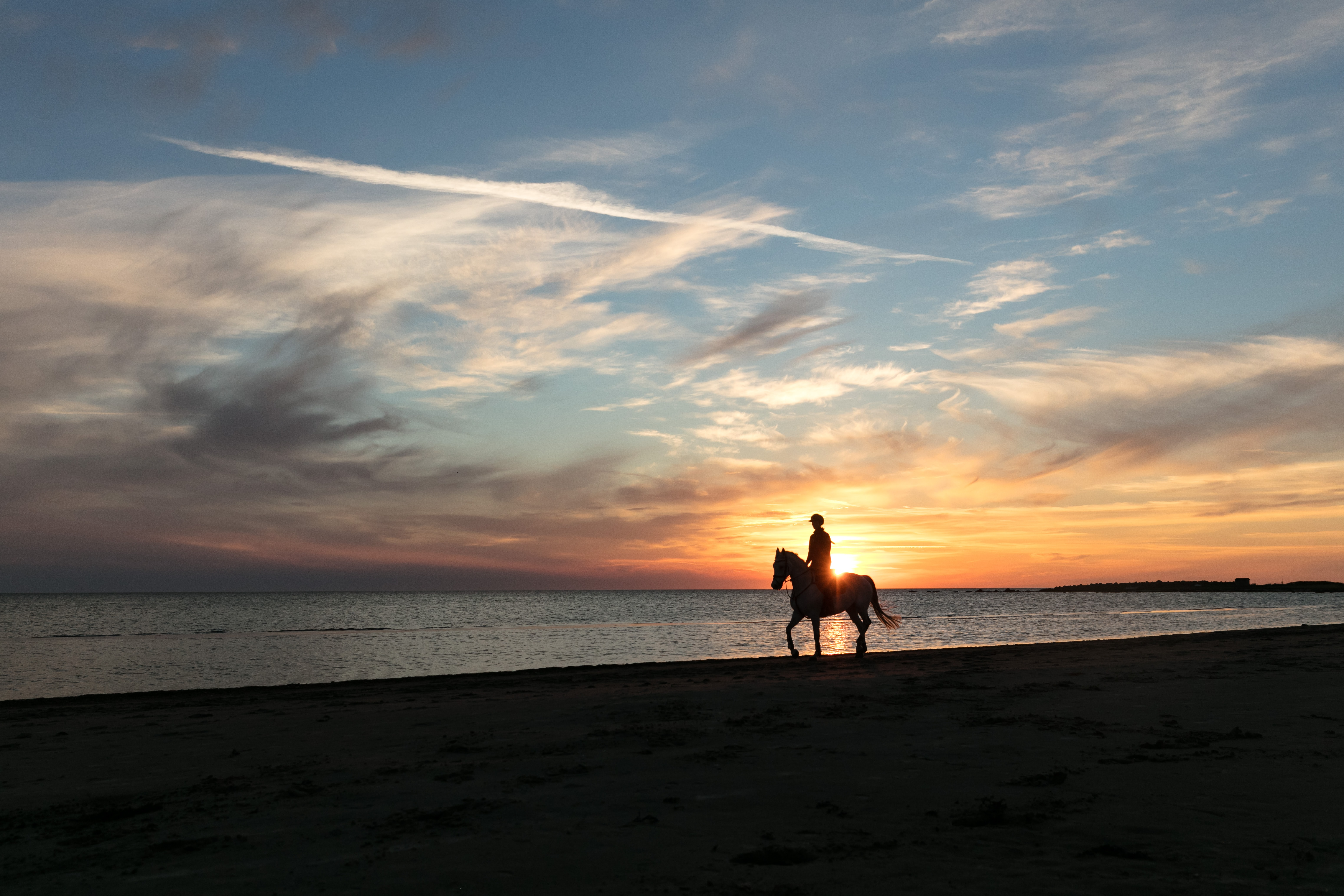 person riding horse near body of water during sunset
