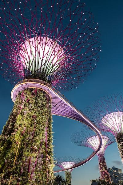 purple tree light Singapore landmark
