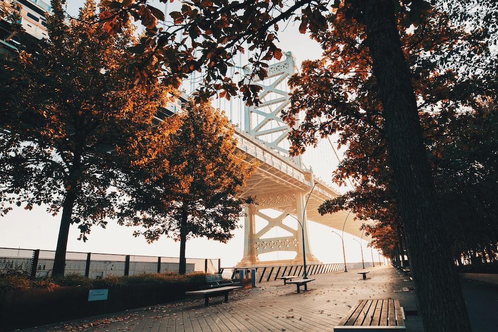 500 Philadelphia Pictures Scenic Travel Photos Download