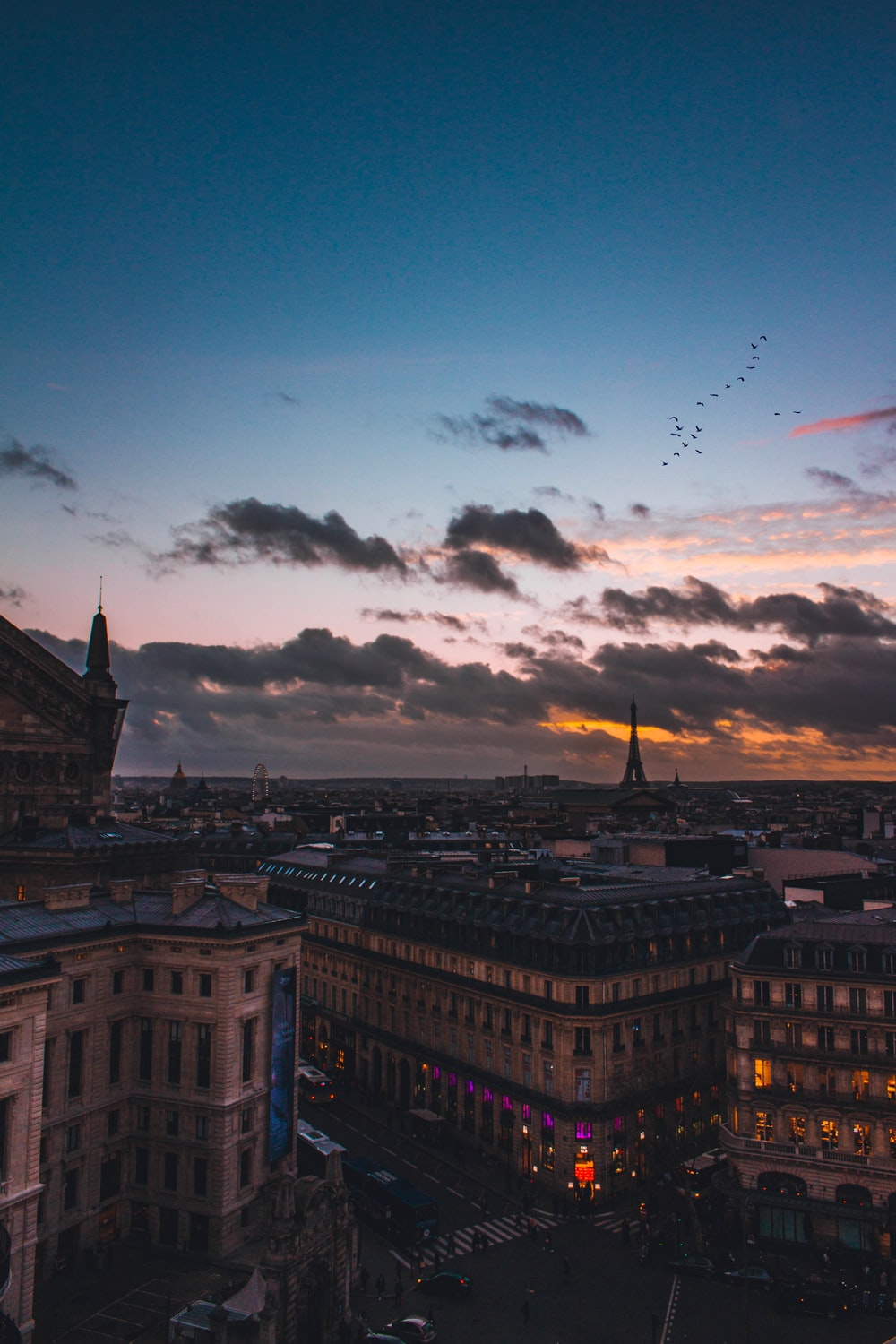 aerial photography of city scapes during blue hour