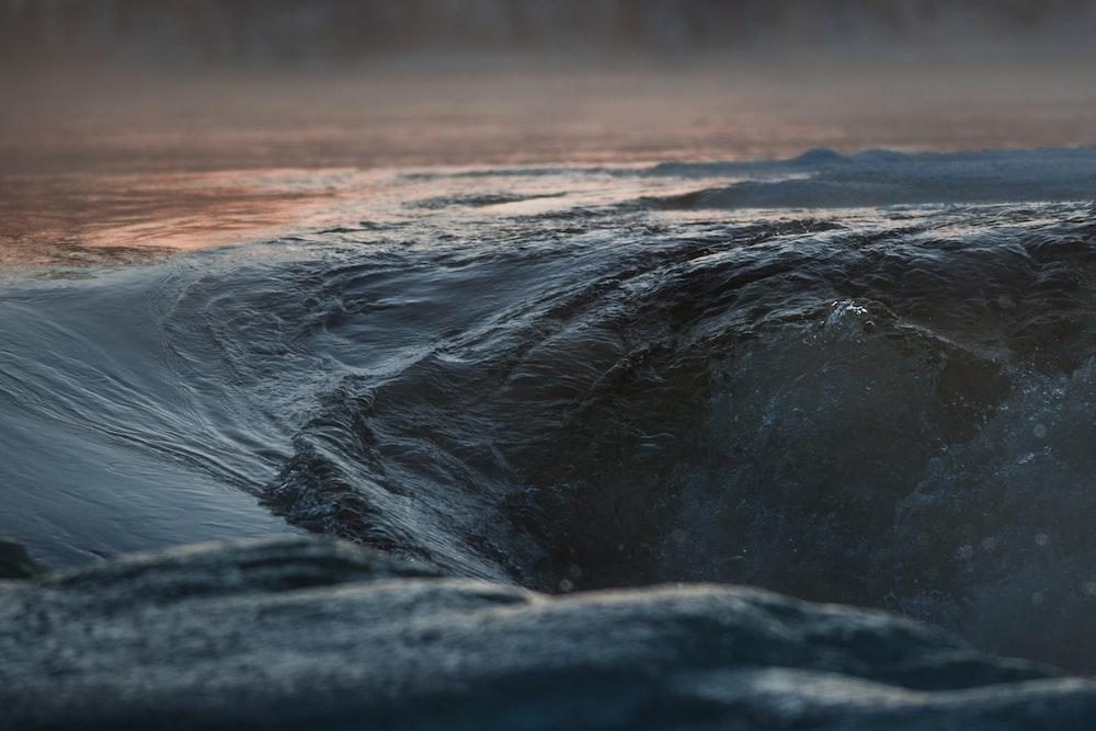 macro shot of body of water