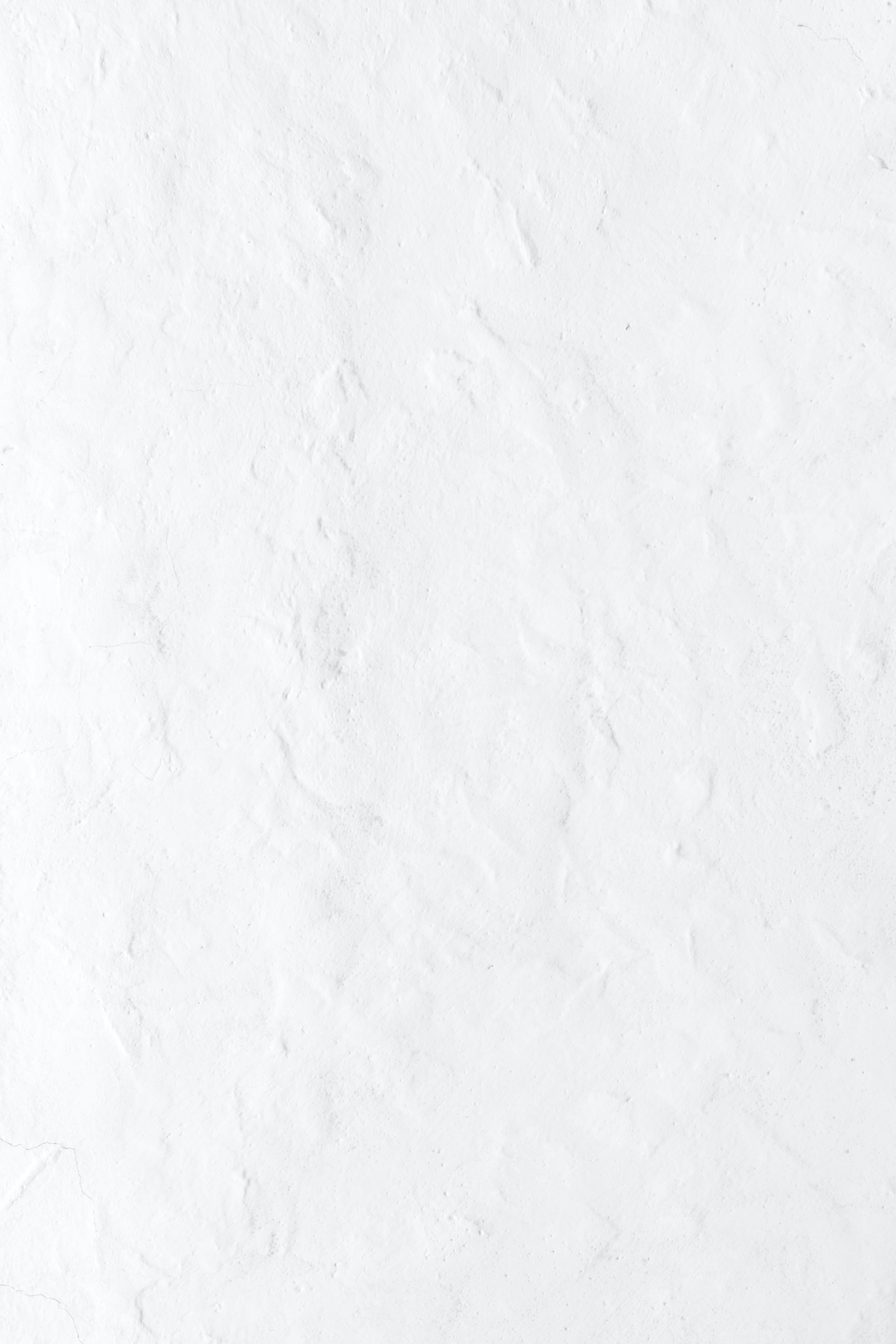 100 White Pictures Hd Download Free Images Stock Photos On