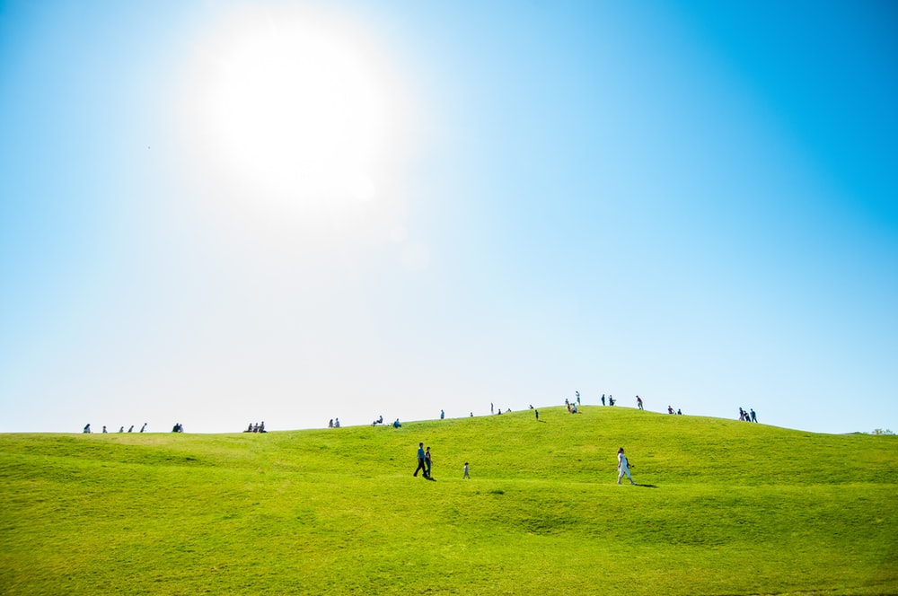 group of people on green field