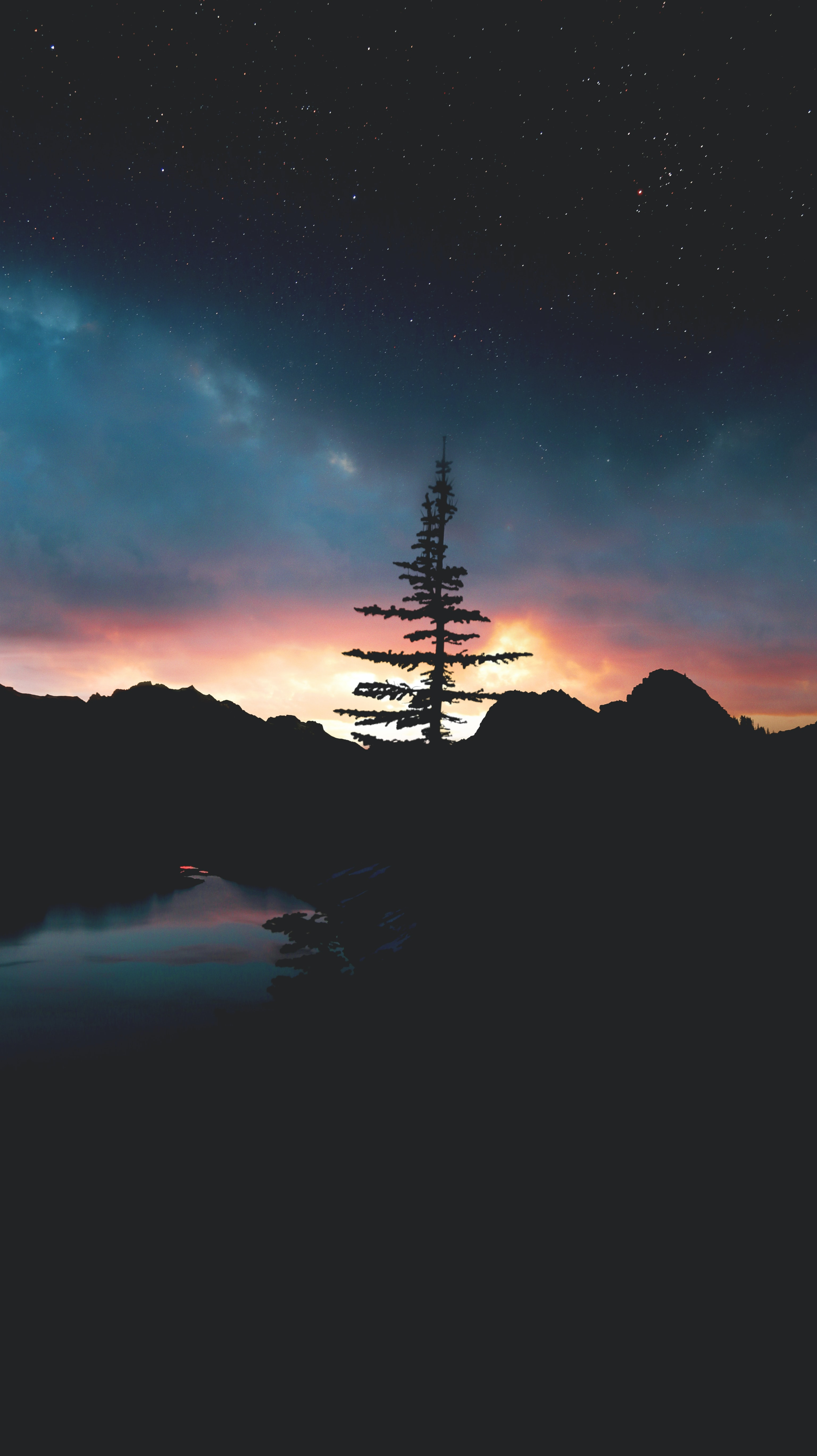 silhouette of tree and mountain