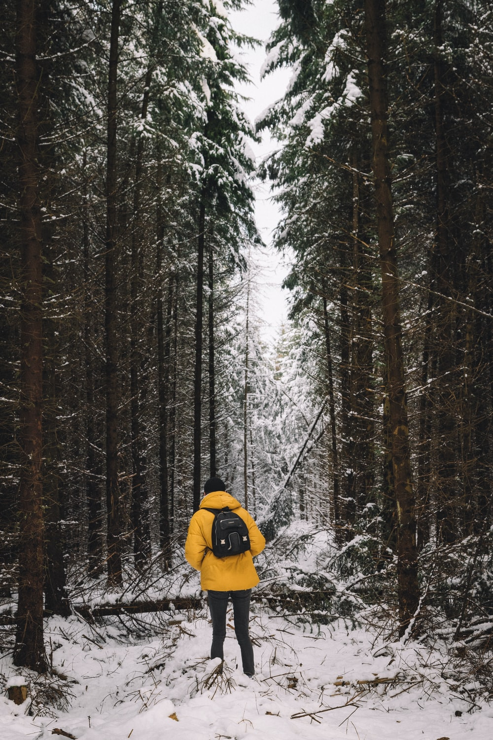 person in yellow bubble jacket and blue jeans in middle of trees