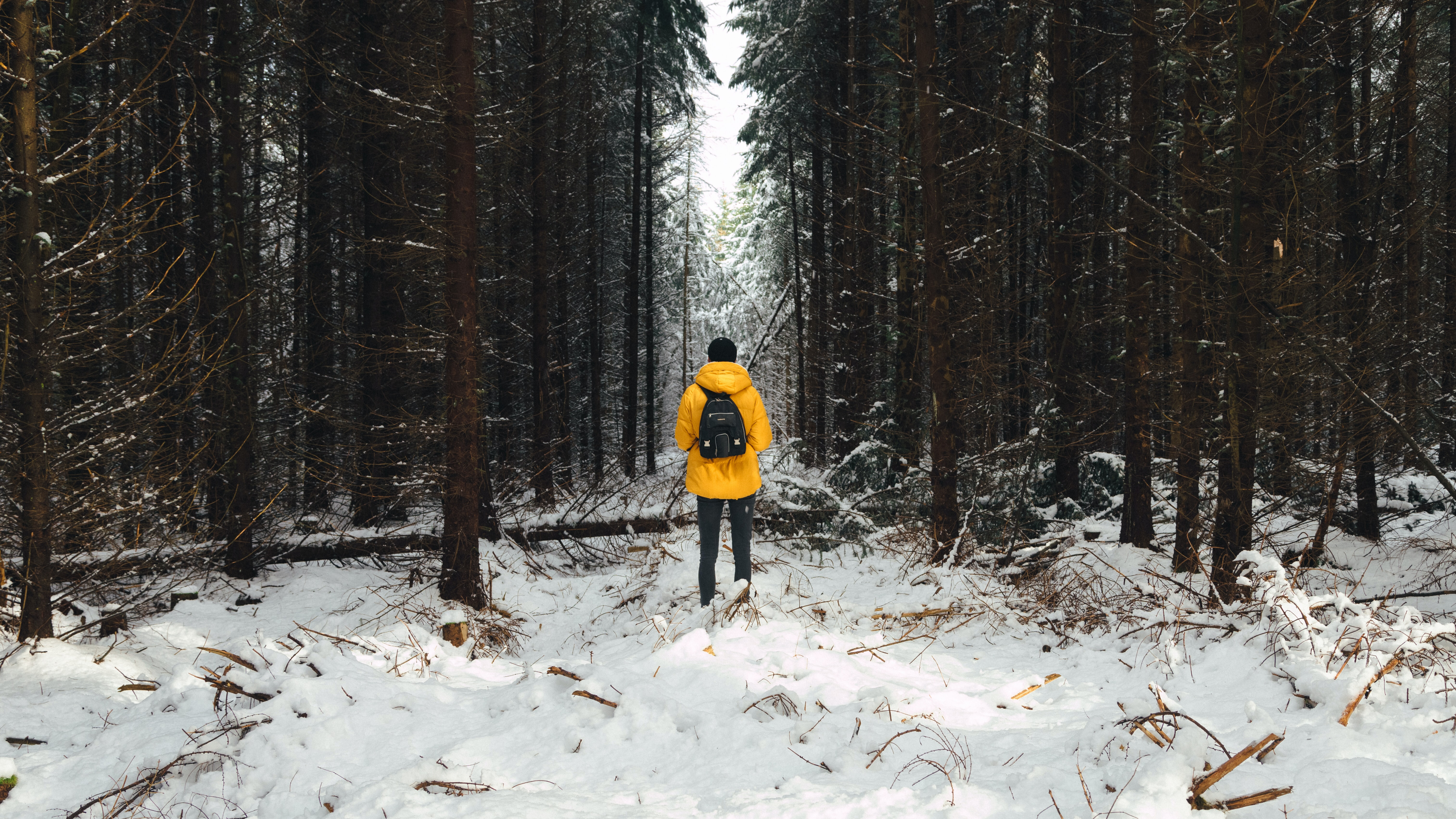 person in yellow jacket between trees during winter