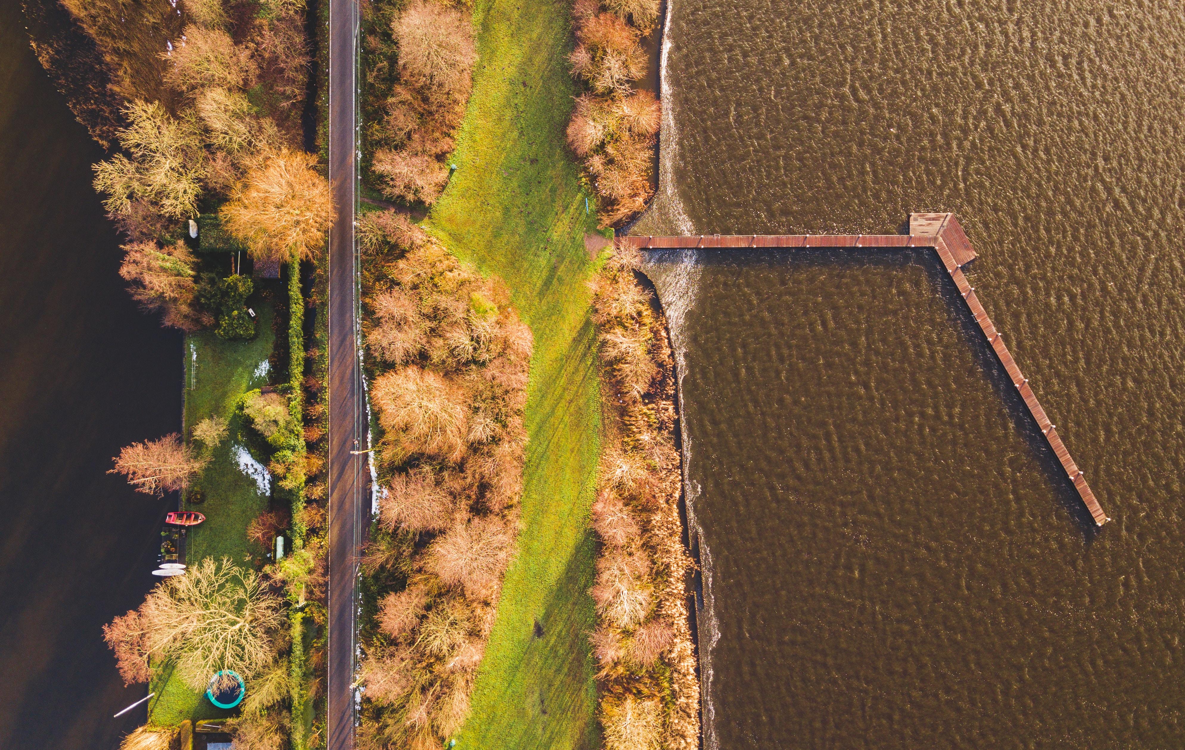 aerial photo of green grassland