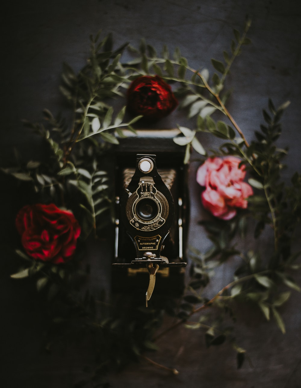 black folding camera surrounded red roses