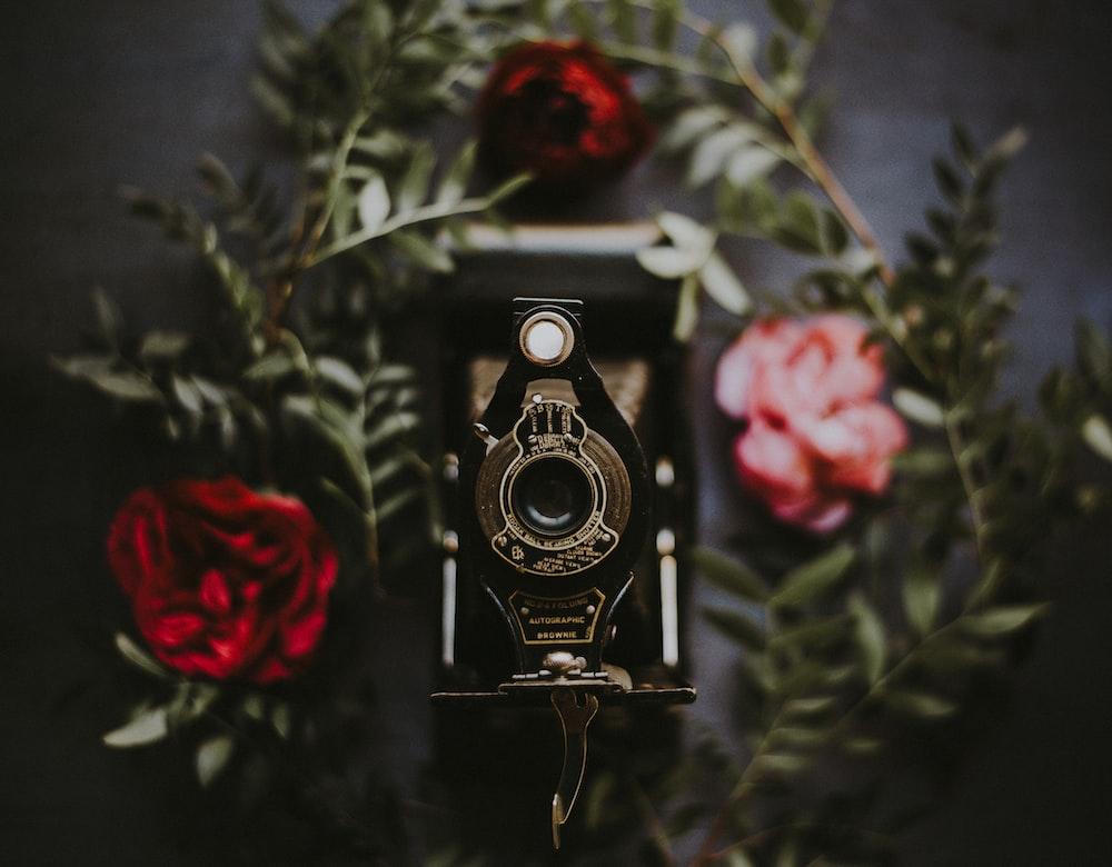 tilt shift lens photography of black land camera