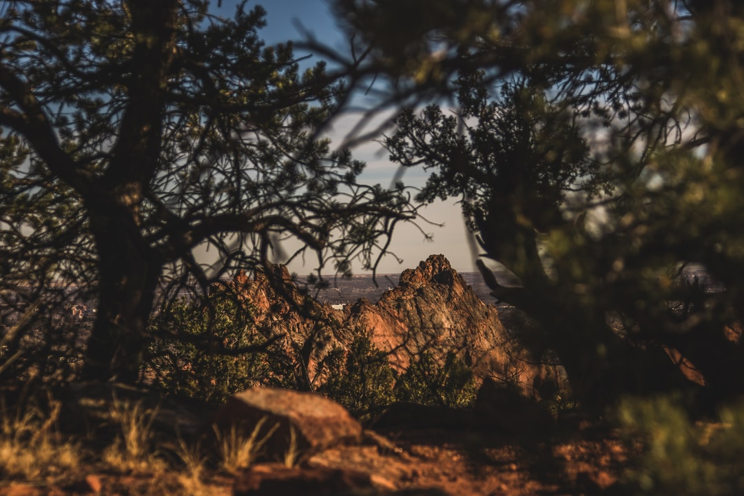 sneaky little shot through the trees of some of the rocks in the Garden of the Gods.