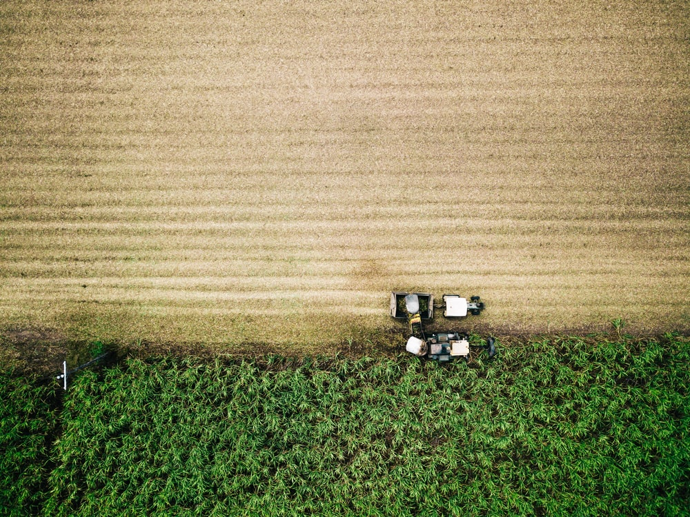 aerial photo of farm