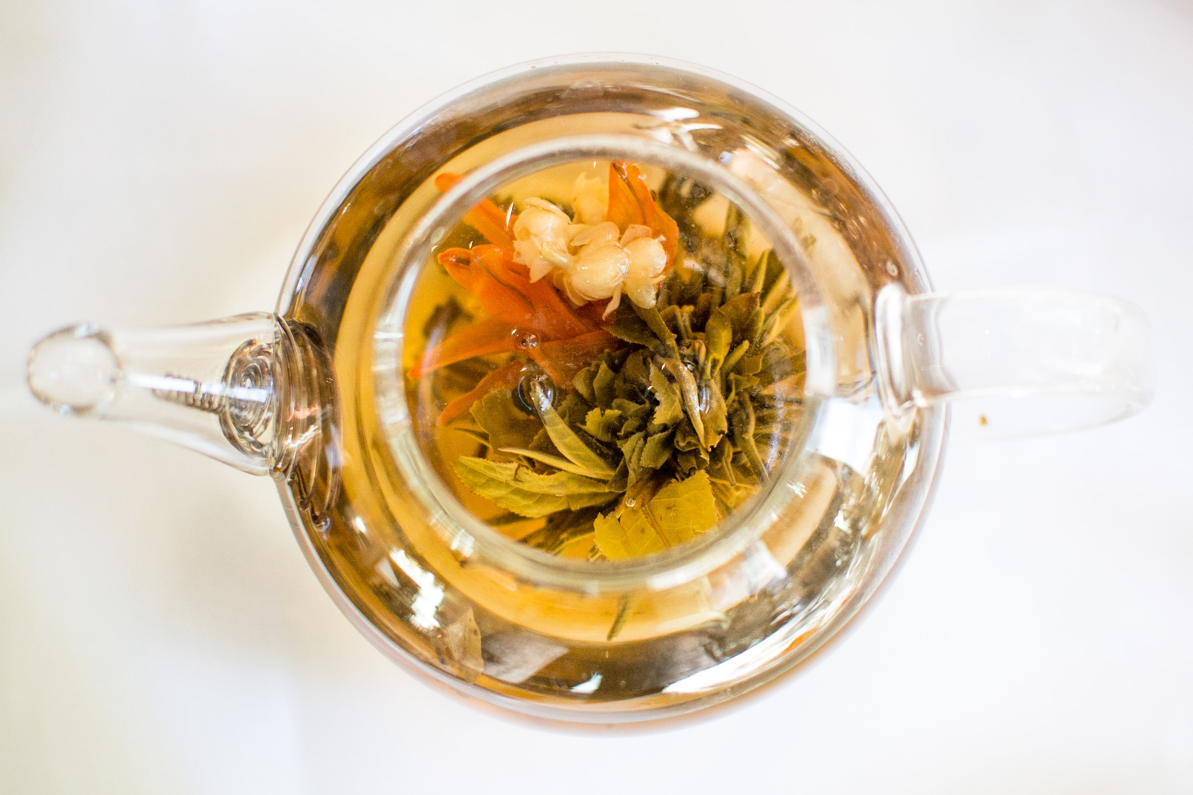 top view photo of green leafed plants inside glass kettle